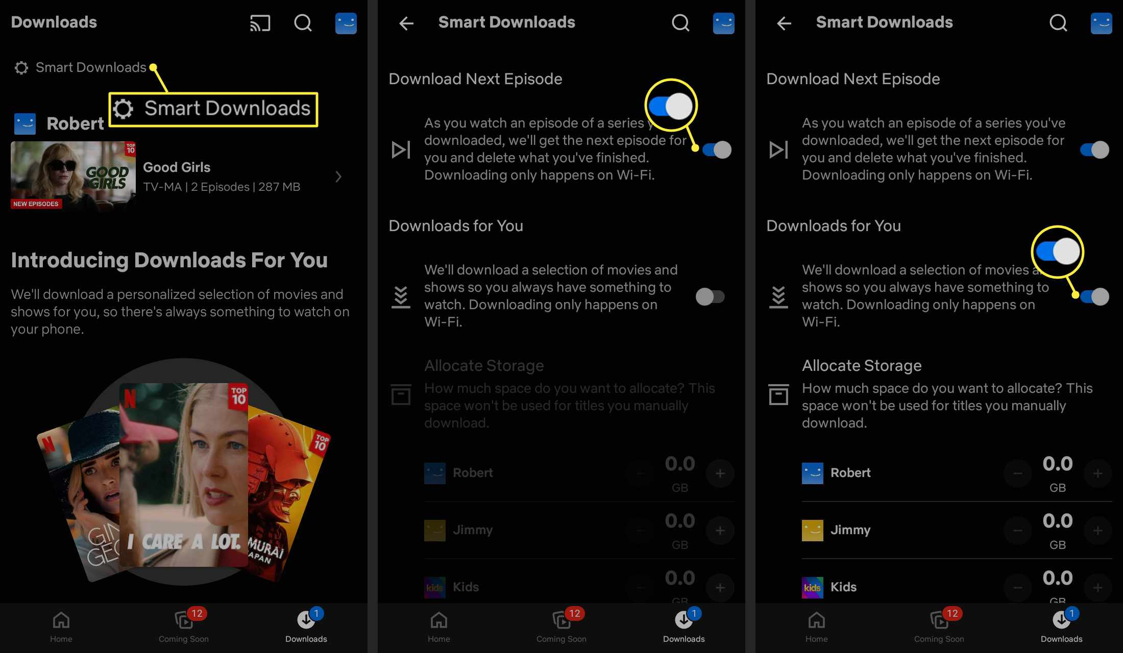 Smart Downloads and toggle switches highlighted in the Netflix mobile app