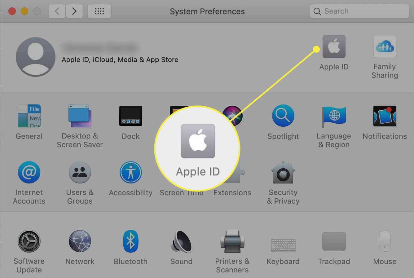 System Preferences in macOS with Apple ID highlighted