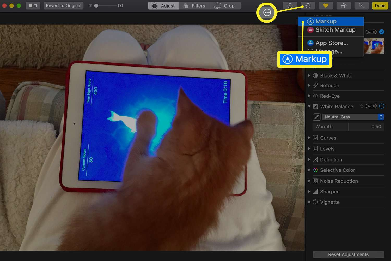 Photos app showing Markup menu location