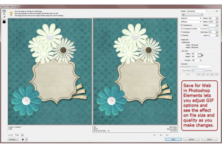 Photoshop Elements Save for Web