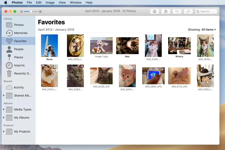Mac Photos app showing the Favorites folder