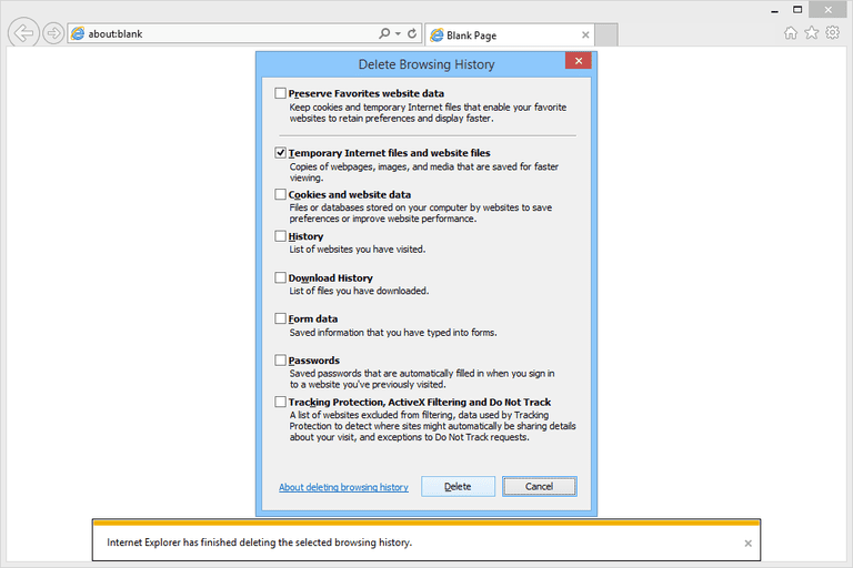 Screenshot showing how to delete the internet explorer cache