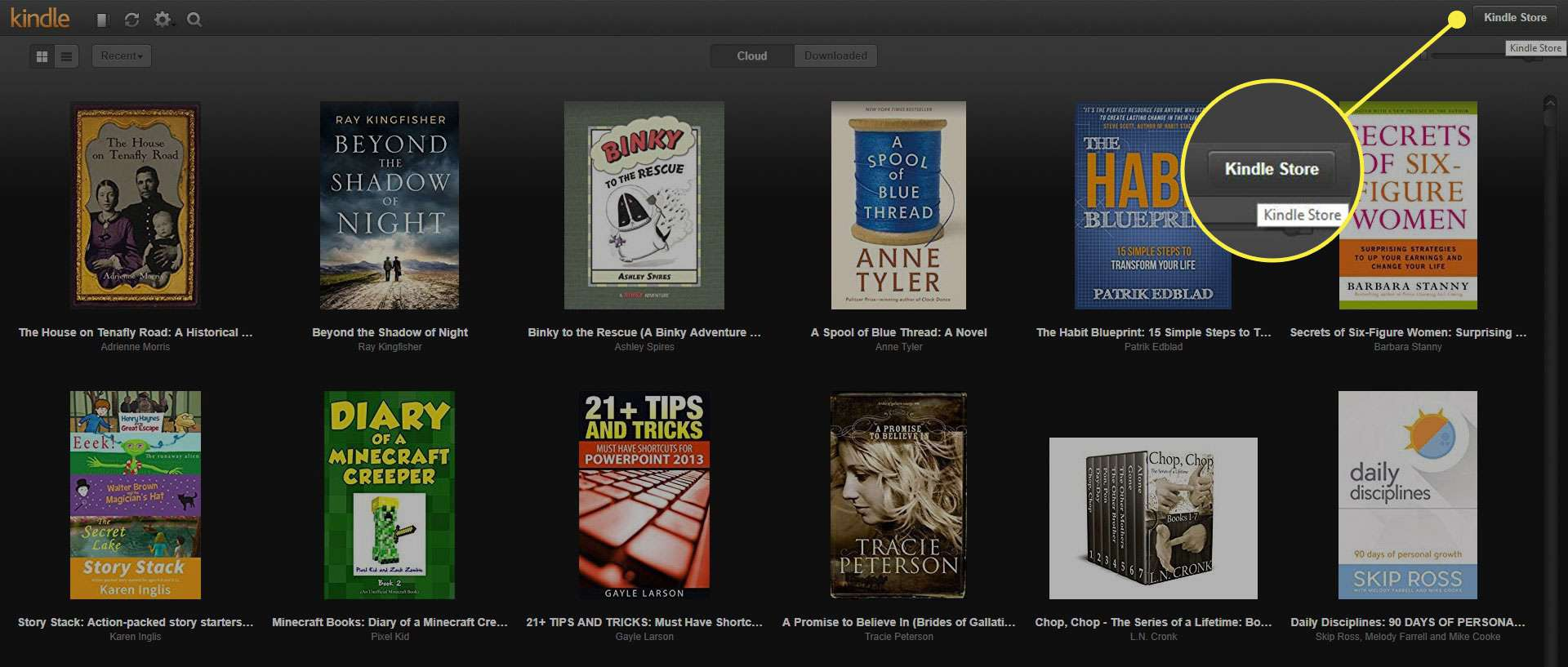 The Kindle Store button