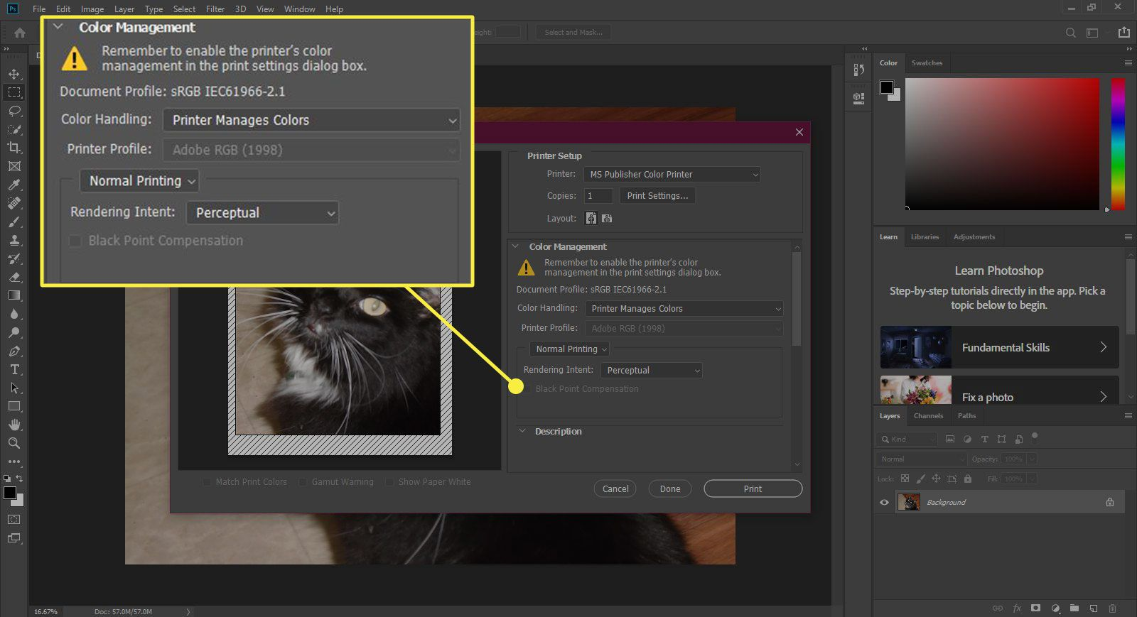 A screenshot of the Print window in Photoshop with the Color Management section highlighted