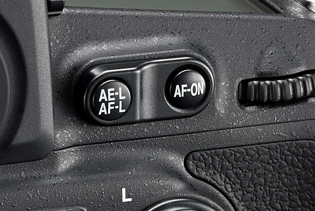 The AF and AE Lock buttons on the back of a Nikon DSLR.