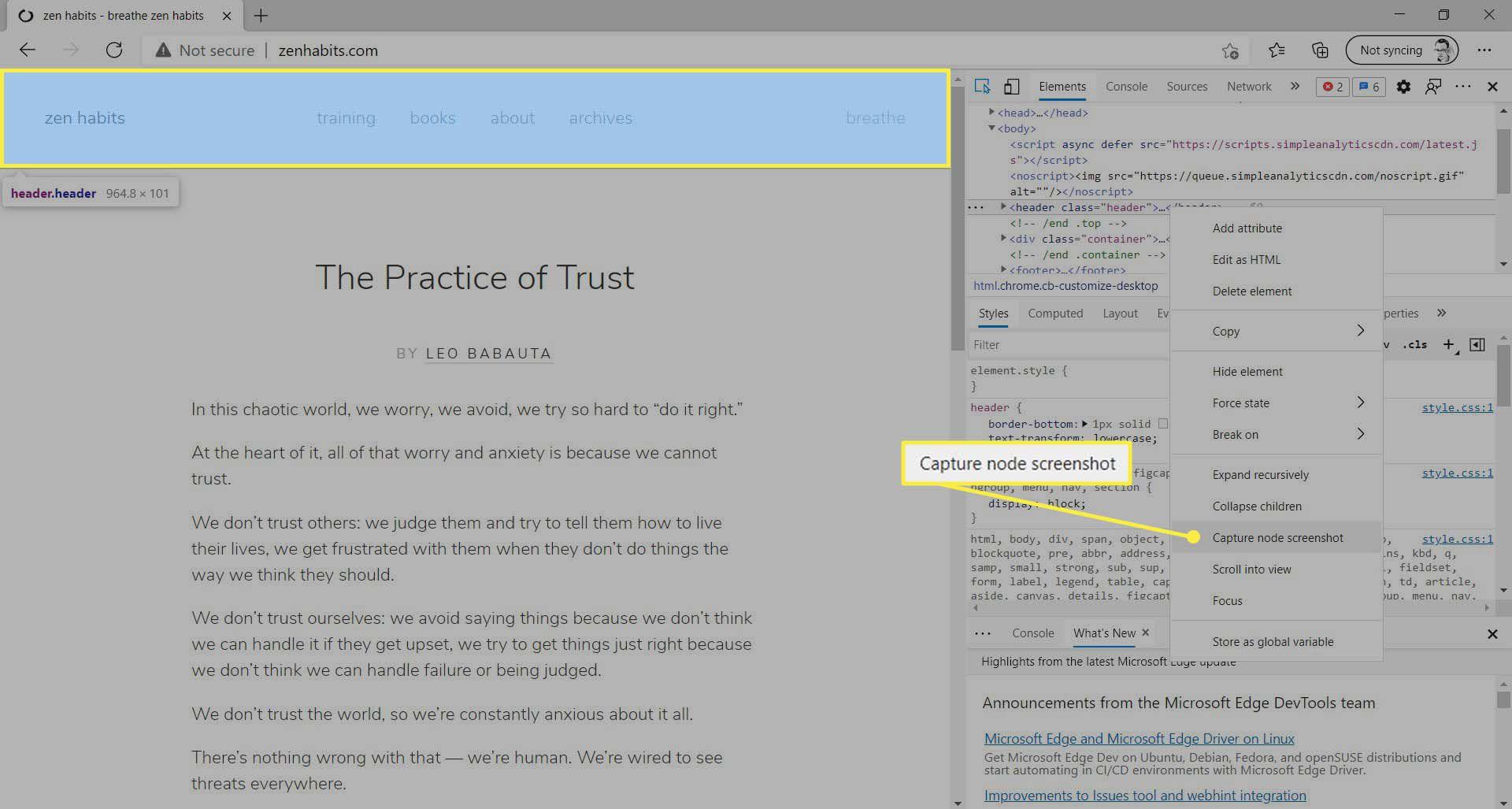 Capture node screenshot menu item highlighted in Microsoft Edge.