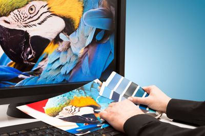 A graphic designer works on a colorful project.