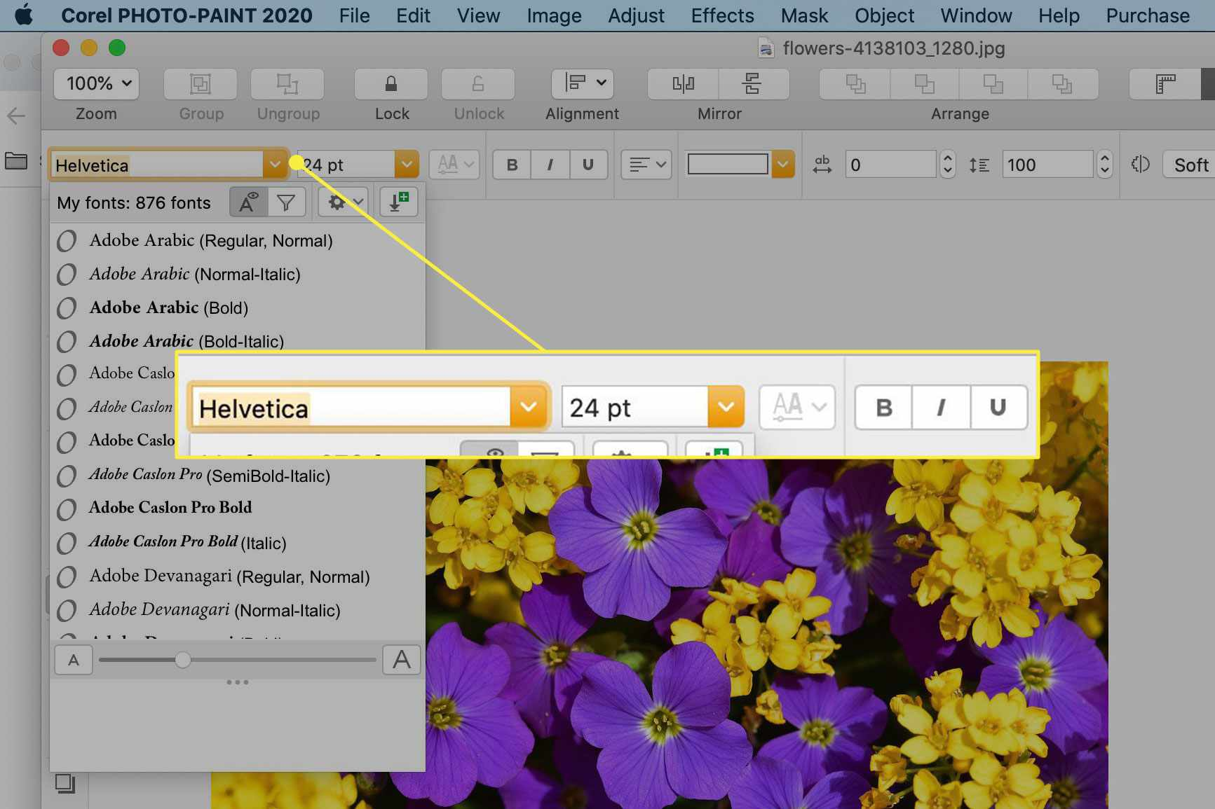 Text formatting options in Corel Photo-Paint