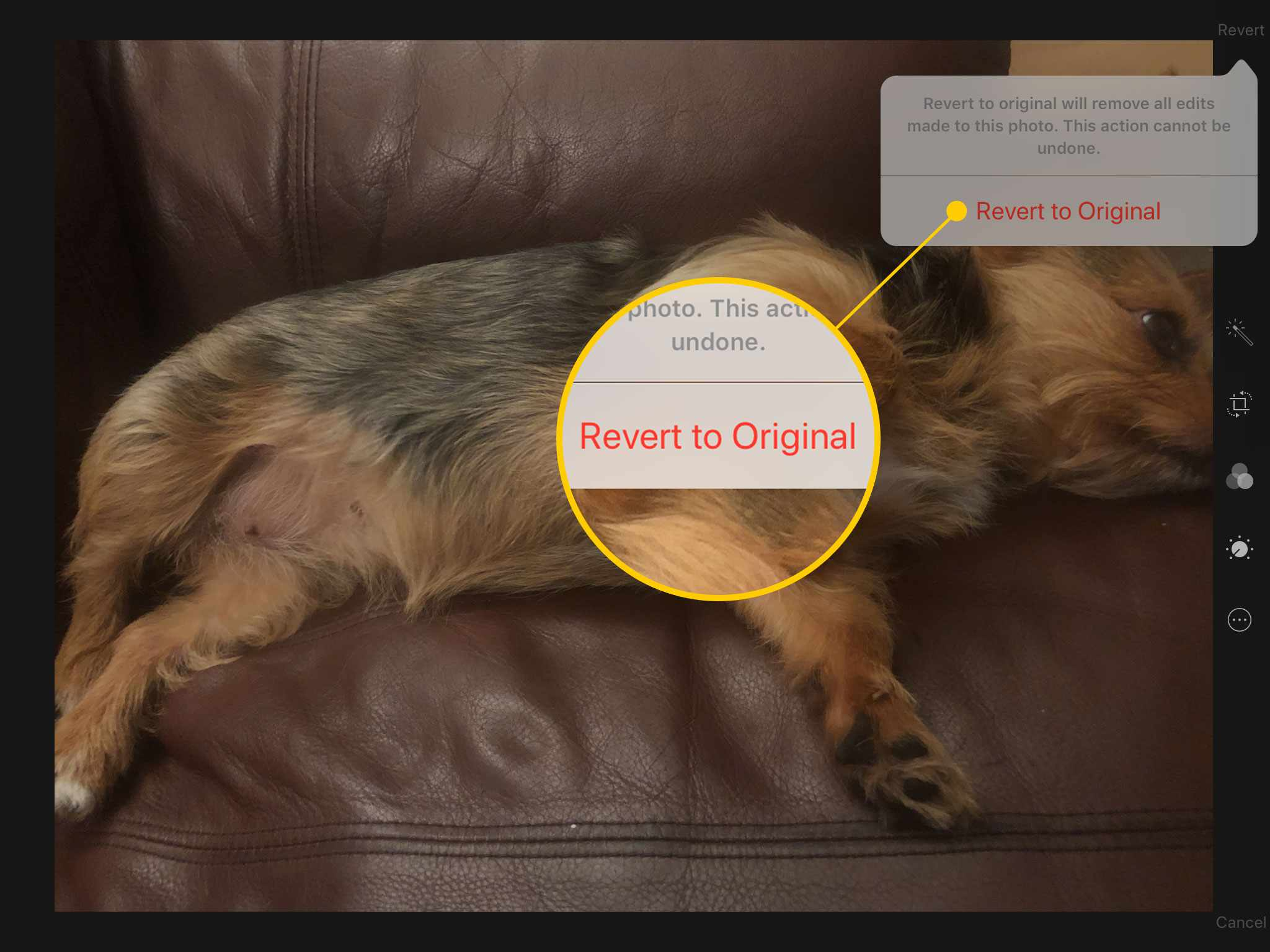 Revert to Original command in Photos on an iPad