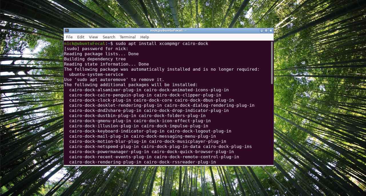 Install Cairo Dock on Ubuntu