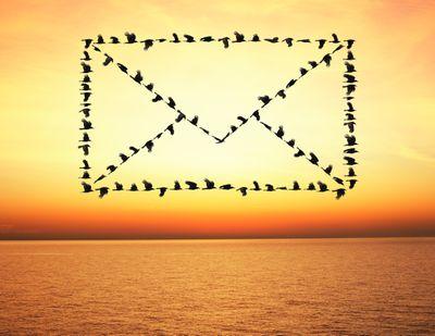 Flock of birds flying in email envelope formation