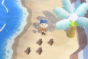 Collecting hardwood from palm tree in Animal Crossing: New Horizons