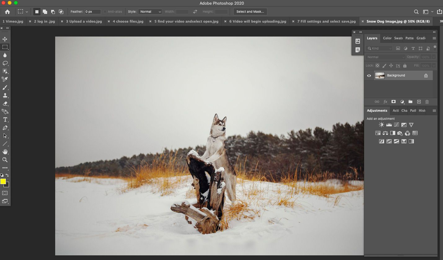 Open Photoshop and add the photo to which you want to add a snow effect.