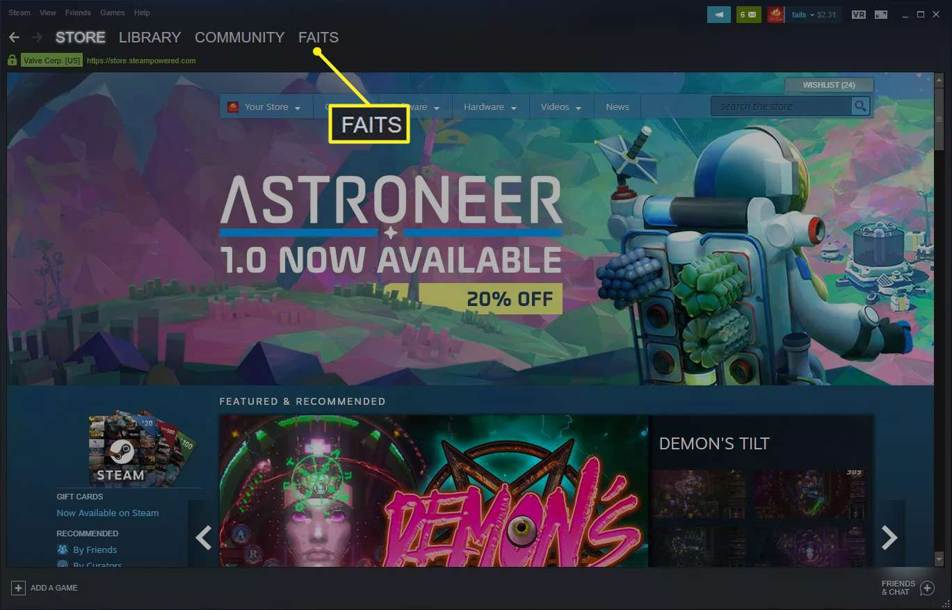 Steam with username selected
