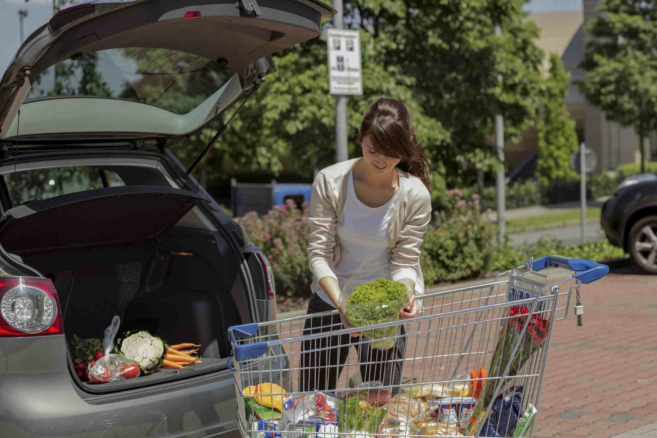 Groceries in a car.