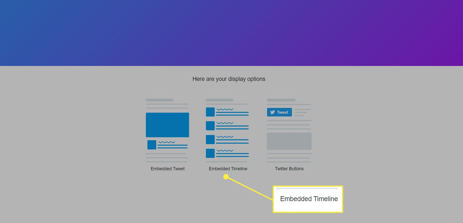The display options for Twitter Publish with 'Embedded Timeline' highlighted