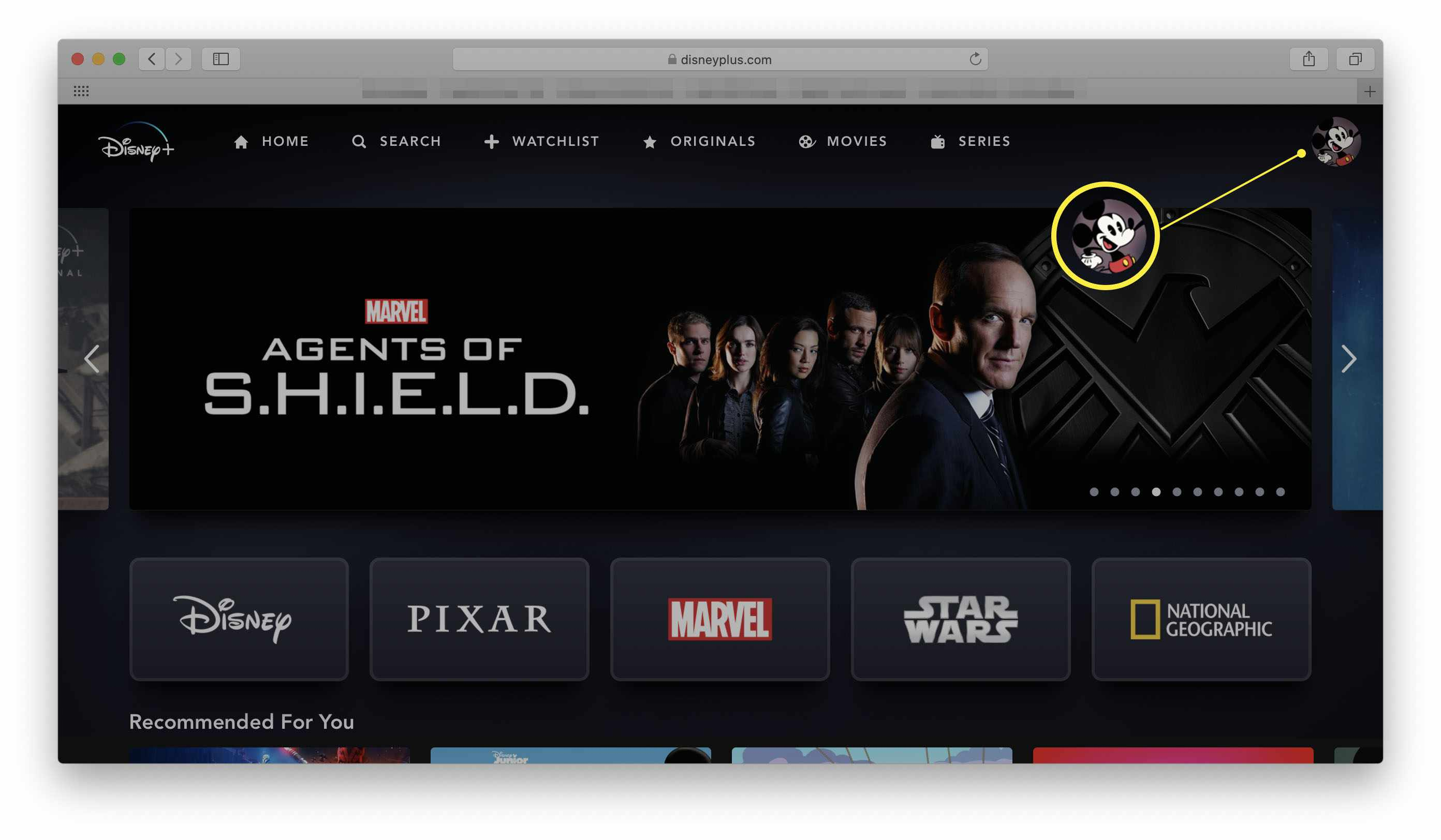 Disney+ website with a profile icon highlighted