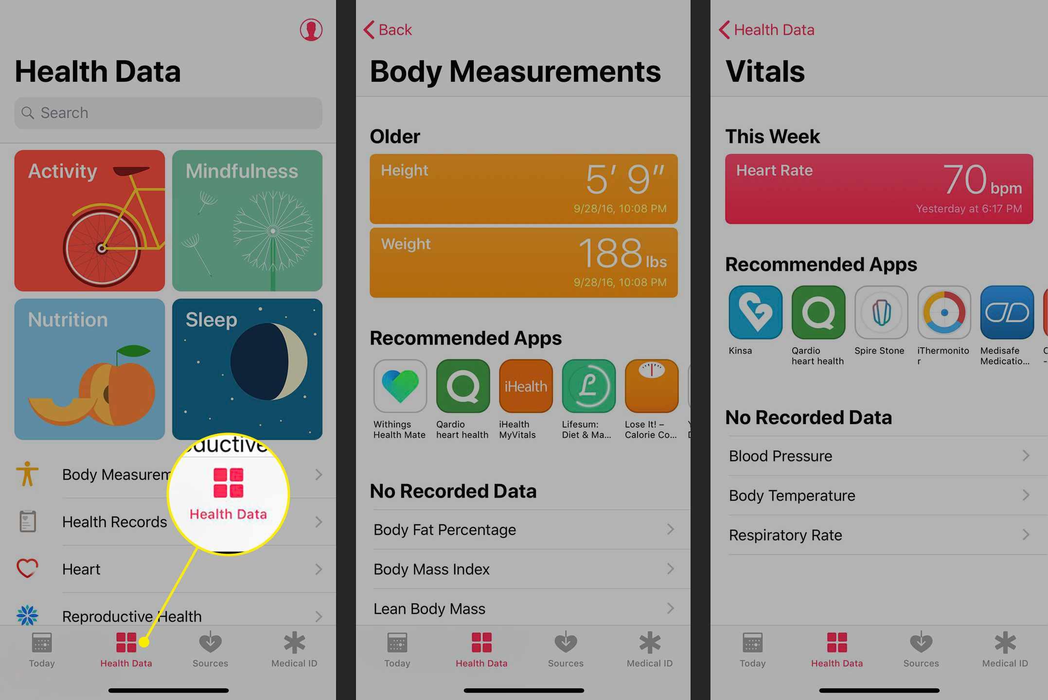 The Health Data tab in the Health app