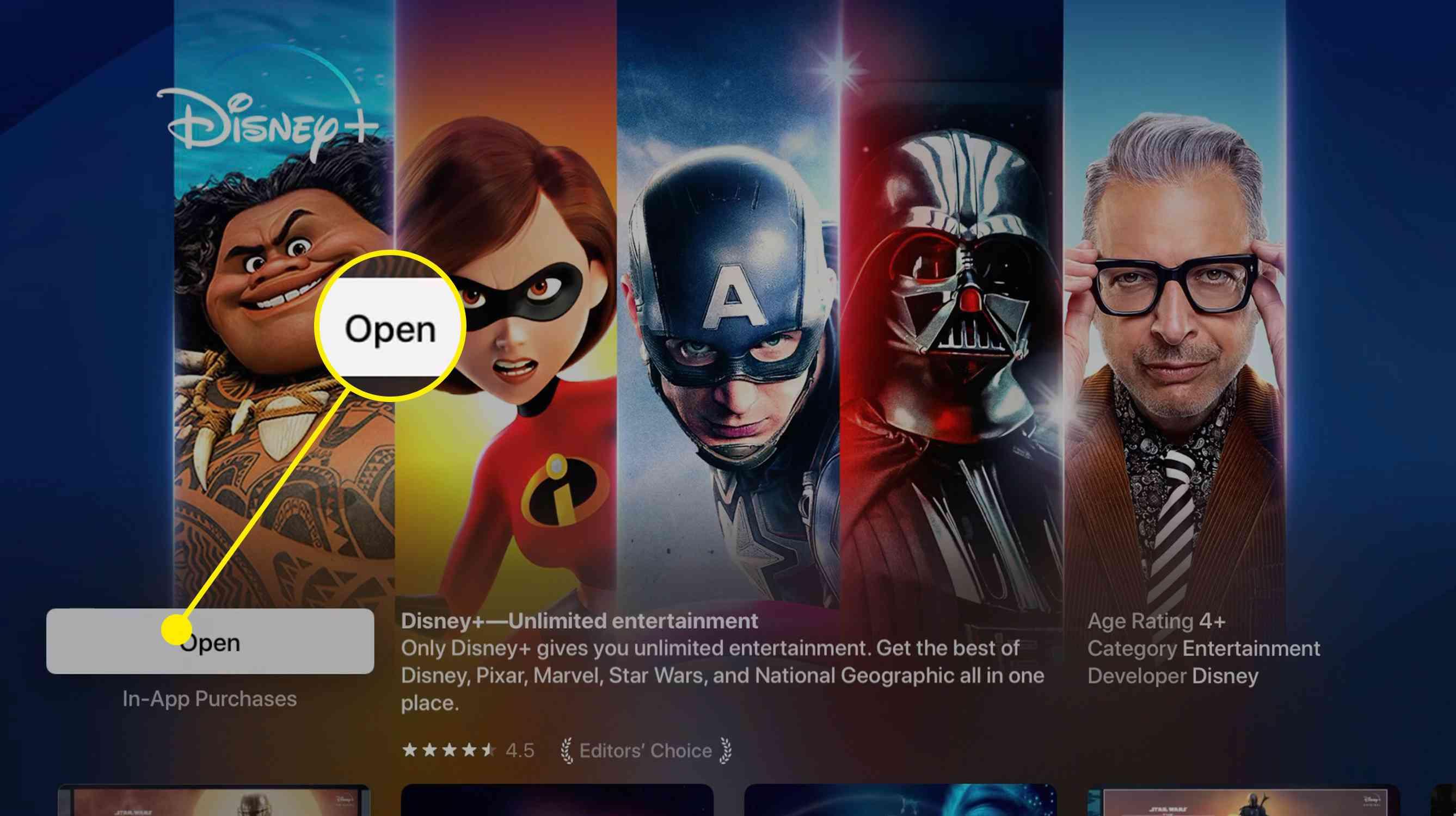 Screenshot of Disney+ in apple TV app store after downloading