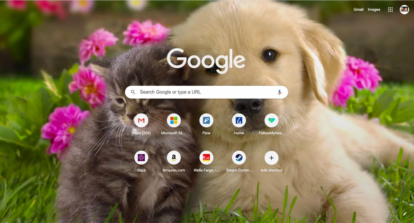 A custom image used as a New Tab background