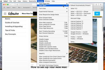 Safari's hidden Develop menu