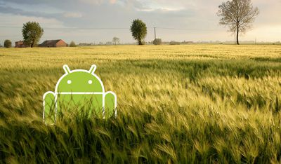 Photo of Google Android's Android standing in a field