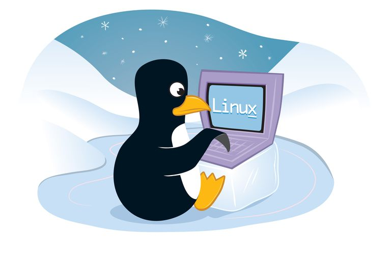 Illustration of penguin typing on a computer screen that reads 'Linux'