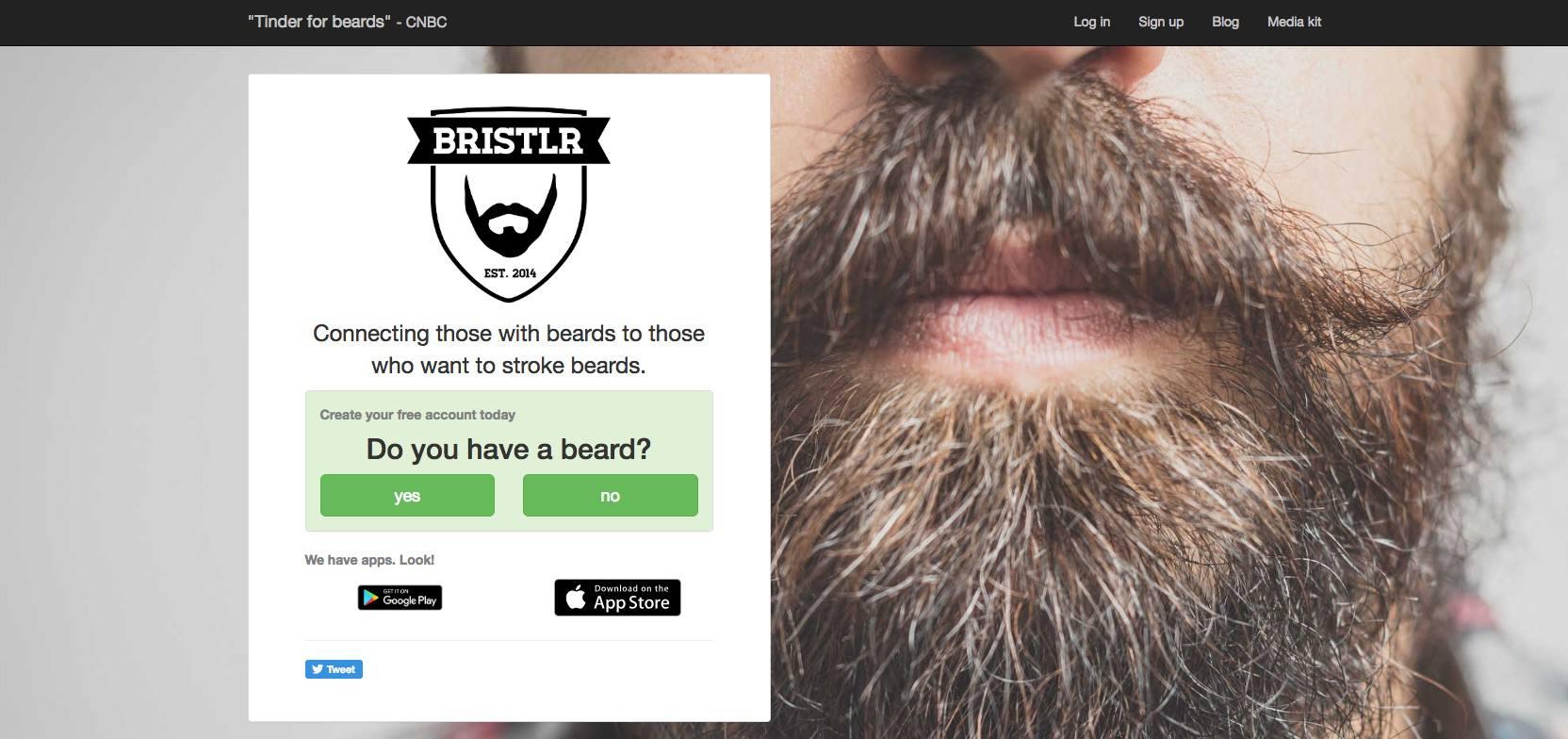 A screenshot of Bristlr.com.