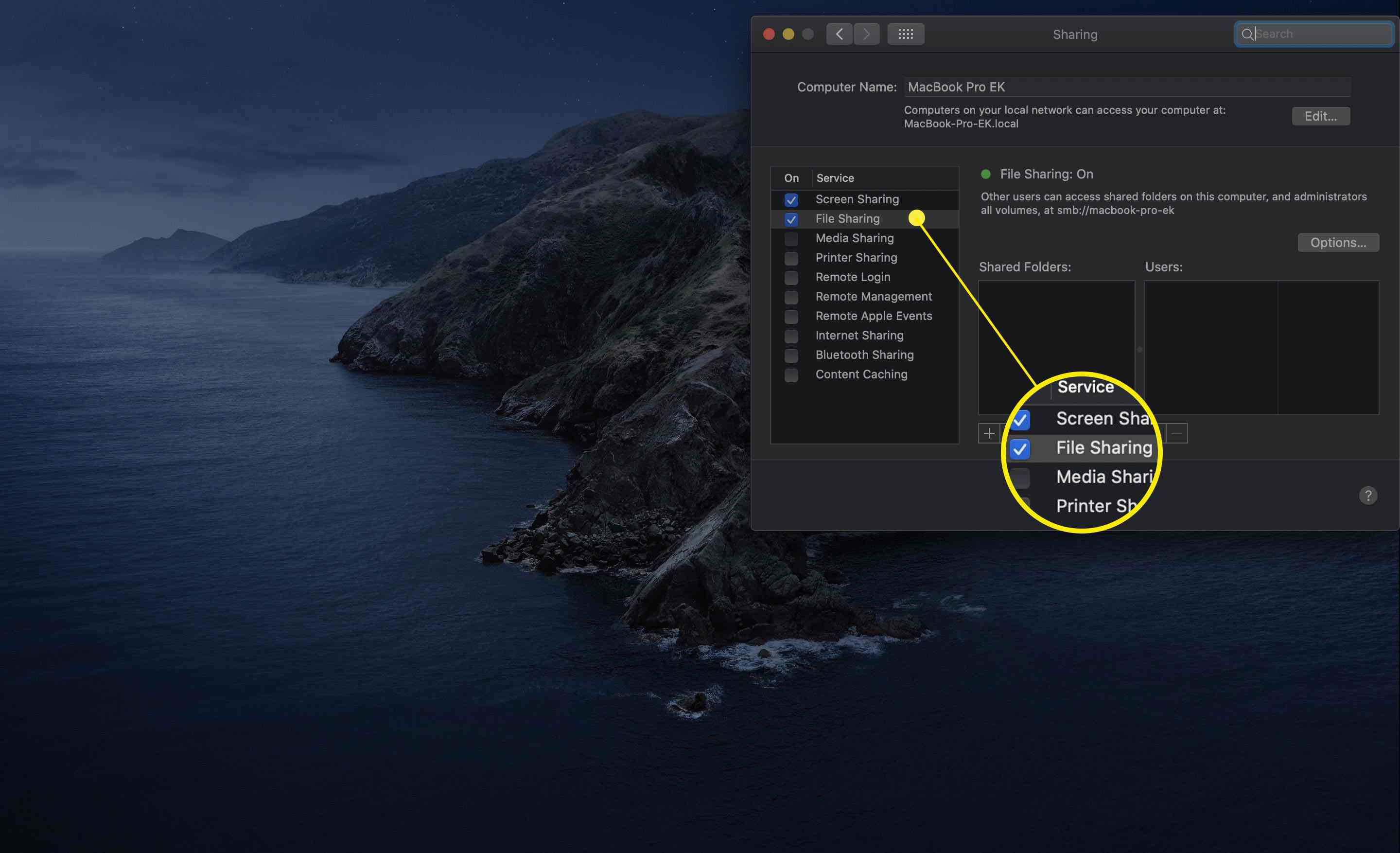 File Sharing option in macOS sharing preferences