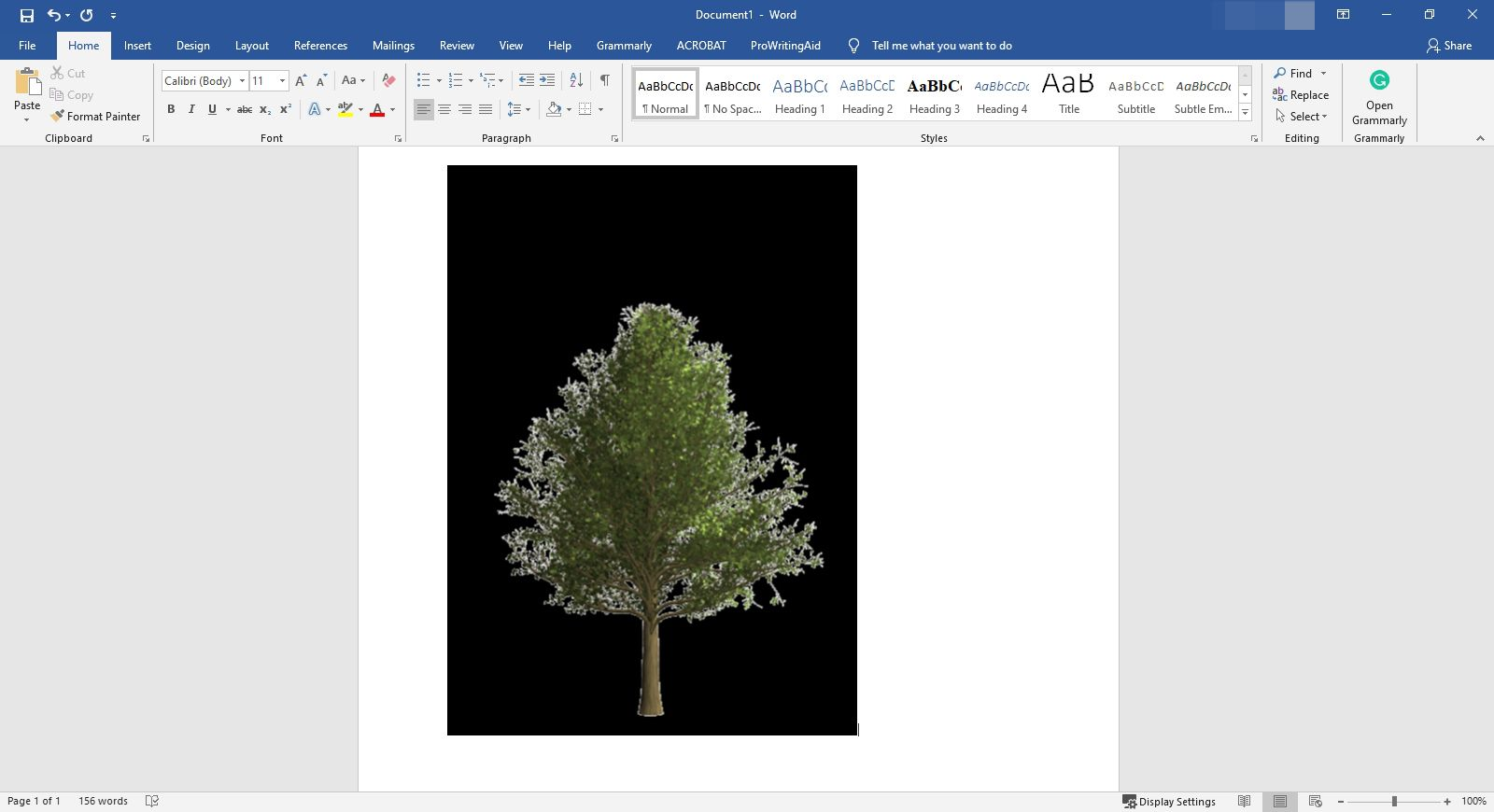 Pasting an image into Microsoft Word.