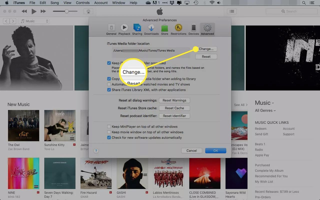 iTunes Advanced preferences with the Change button highlighted