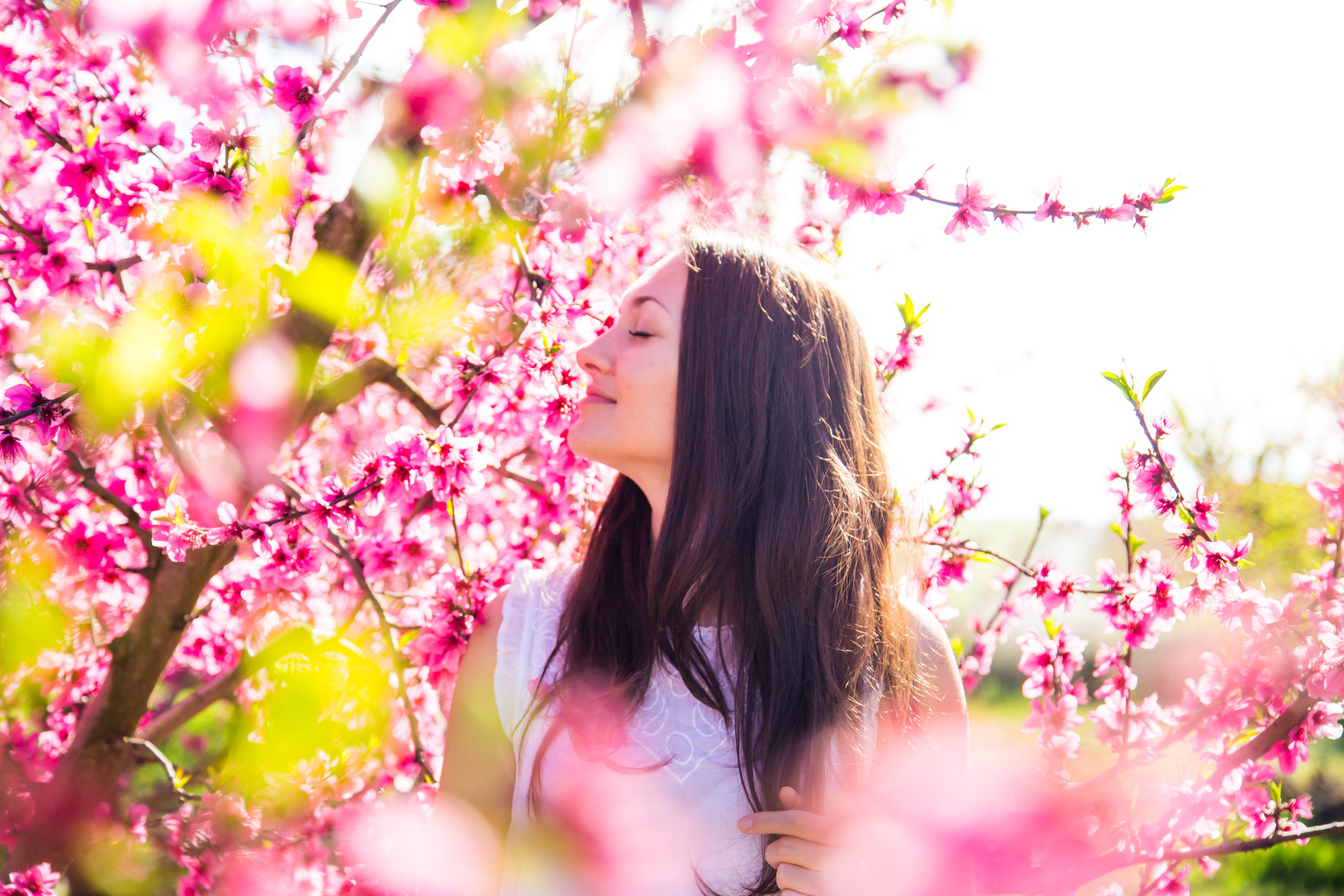 A woman smelling pink flowers on the tree