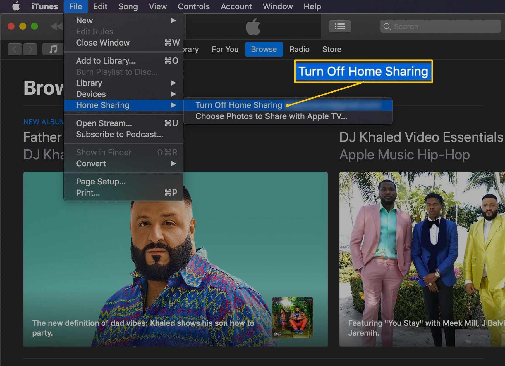 Turn Off Home Sharing menu item in iTunes