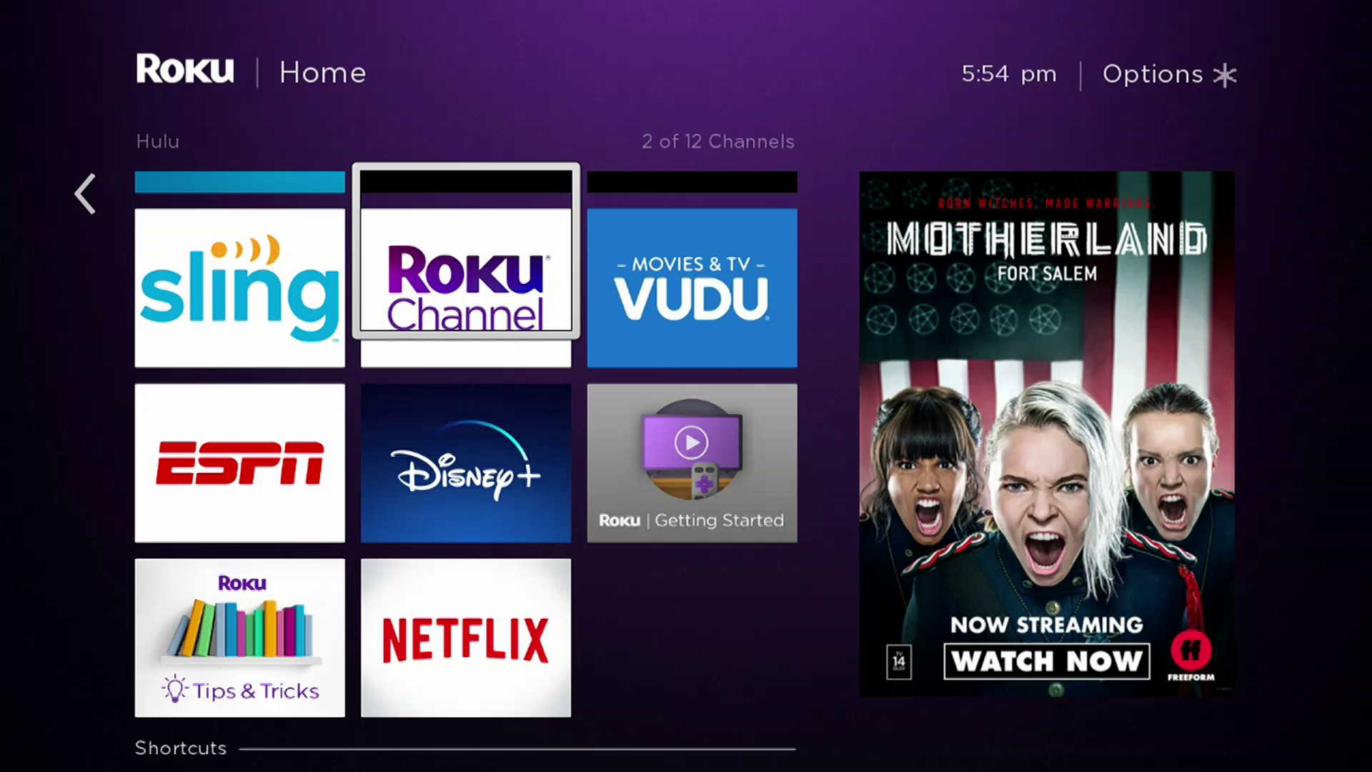 How To Get Netflix On Roku