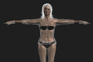 A 3D model being rigged