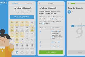 Duolingo new tools for Japanese