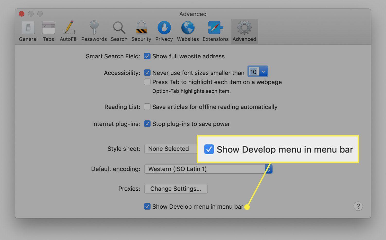 Safari advanced settings with the