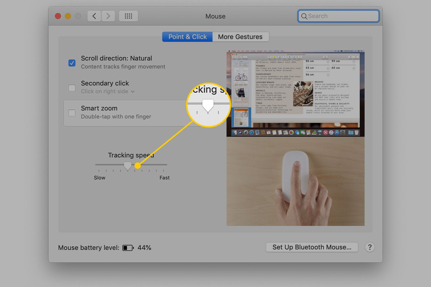 Tracking Speed in Mouse settings on a Mac