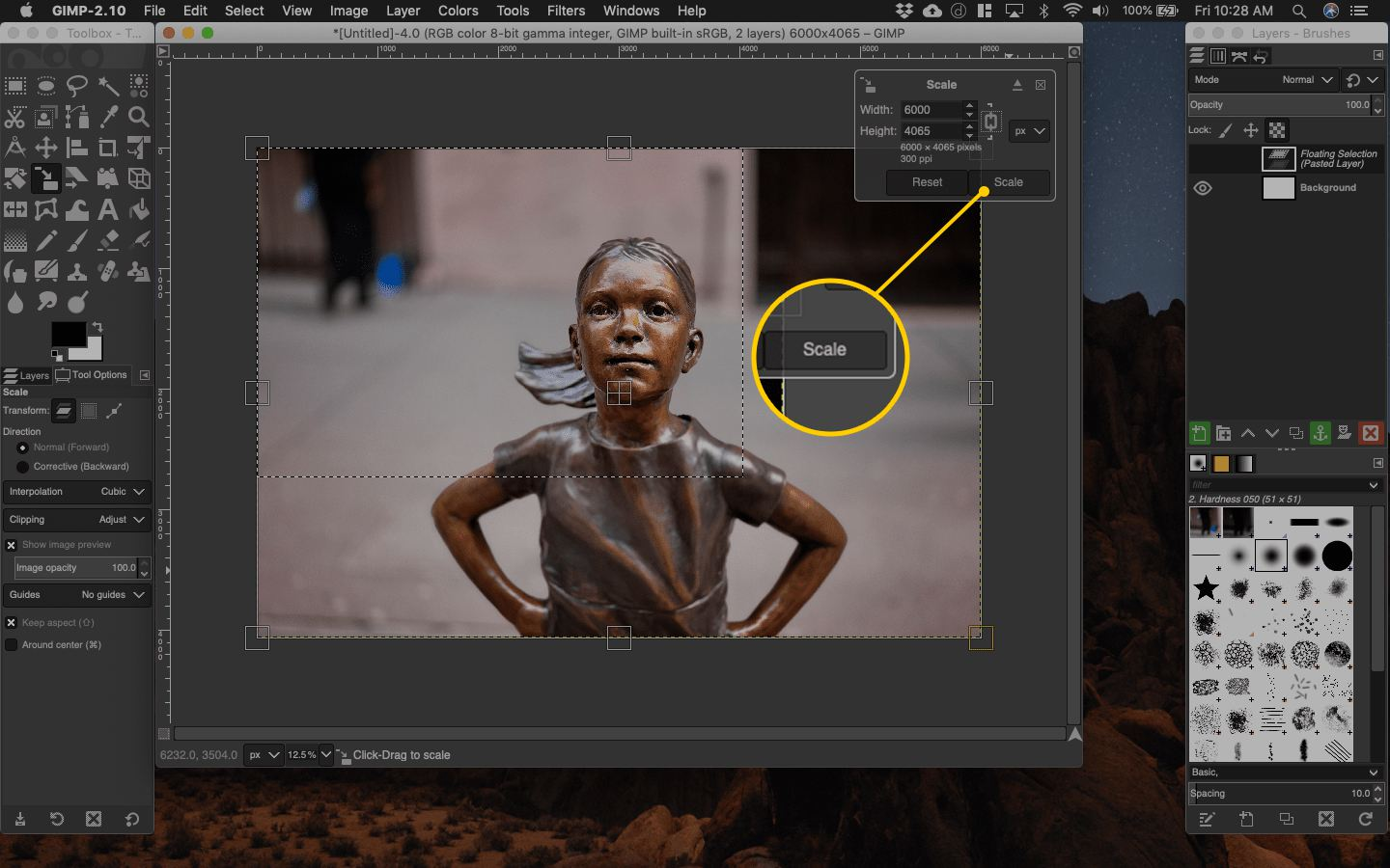 Scale button in Gimp for macOS
