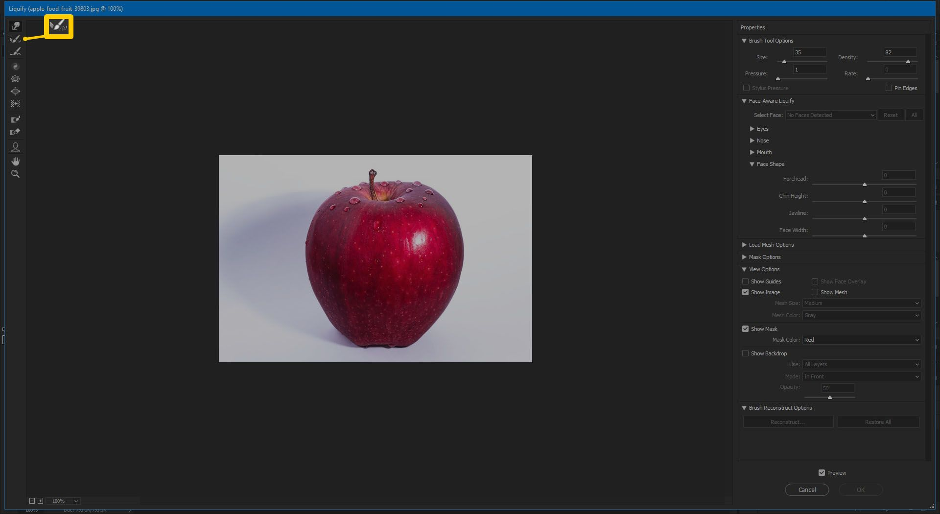 Screenshot of the Reconstruct Tool in Photoshop CC 2019.