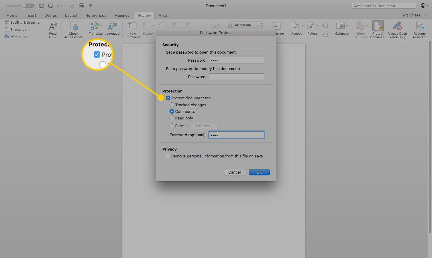Password Protect window in Word with the Protect Document For check box highlighted