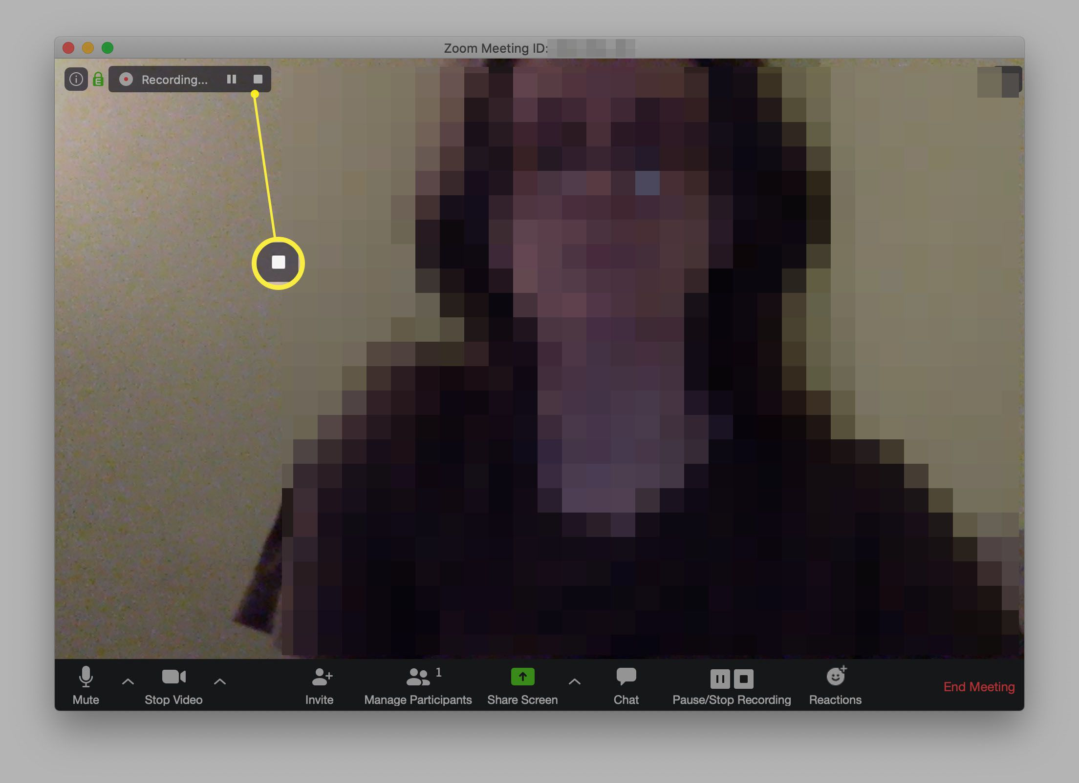 Zoom meeting being recorded with pause and stop highlighted