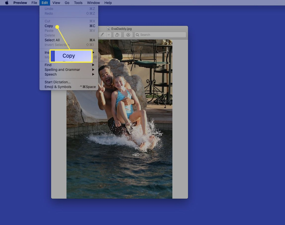 Picture open in Preview with Edit > Copy highlighted