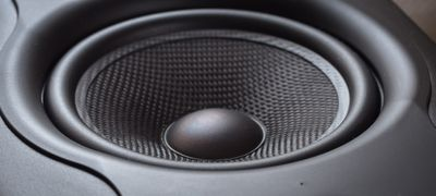 A speaker's subwoofer cone