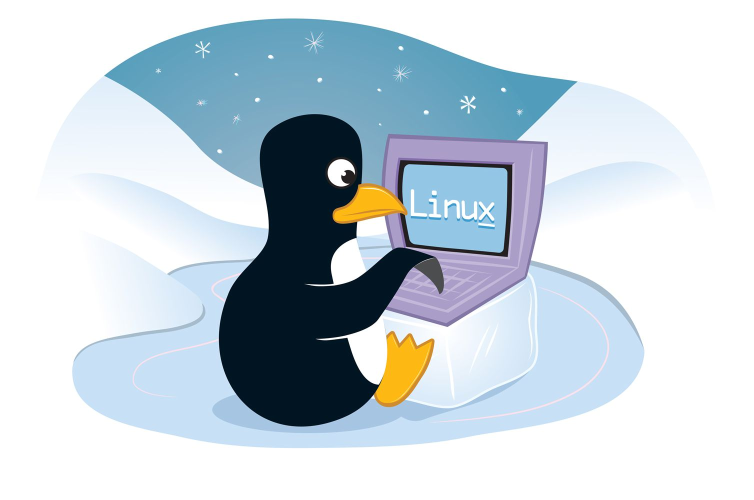 Penguin using laptop