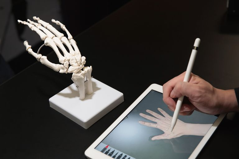 Someone draws a skeletal hand using Apple Pencil.