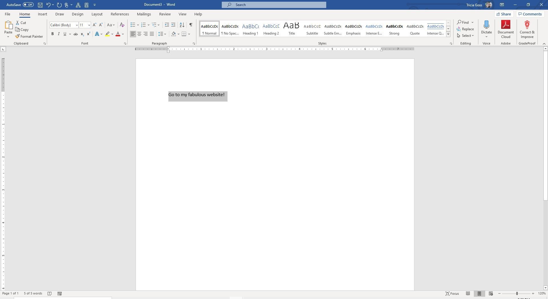 Screenshot of selected text in Word