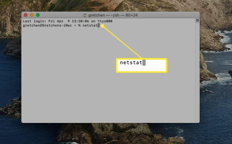 Terminal window with the netstat command highlighted