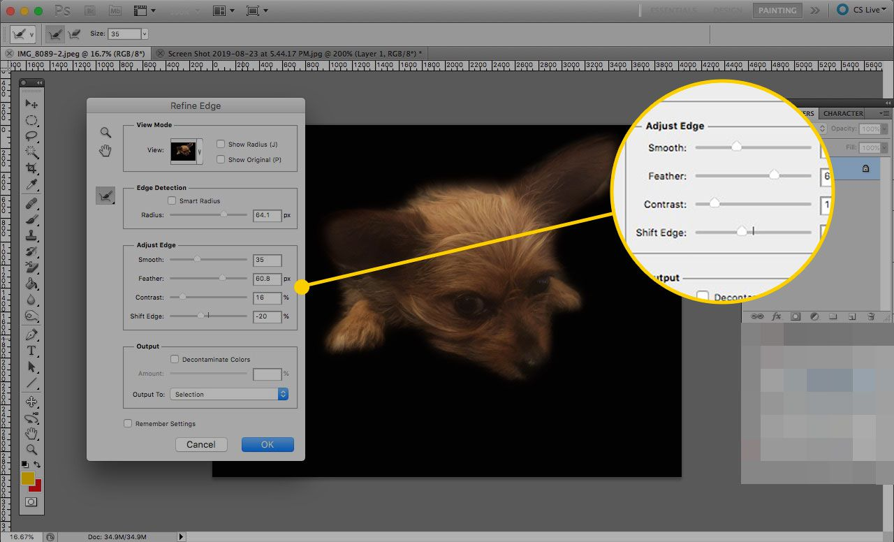 Refine Edge window in Photoshop with the Adjust Edge sliders highlighted