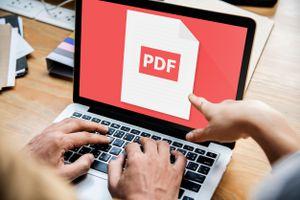 PDF on computer screen